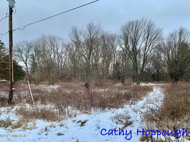 0 Prairie View Lot A Dr Ionia, MI 48846