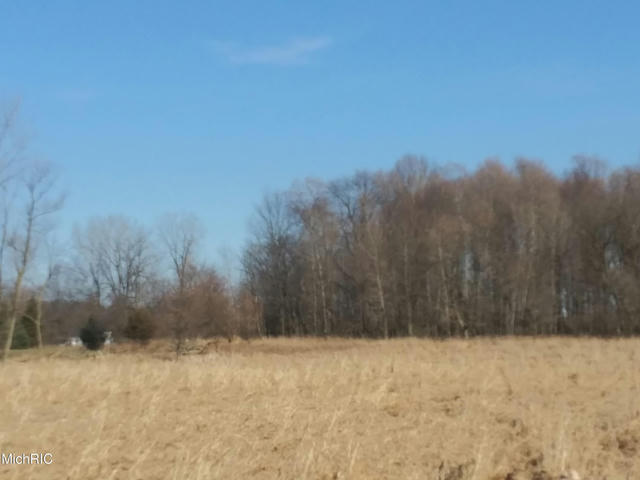 8887 Bell Road (Vacant Land S Of Home) R Clarksville, MI 48815