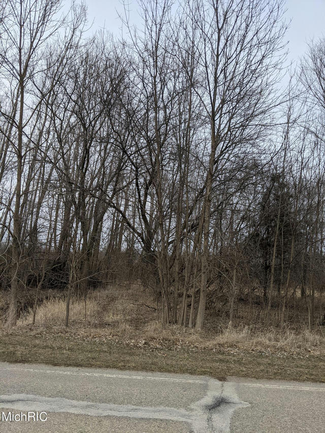 Tbd E Main St Maple Rapids, MI 48853