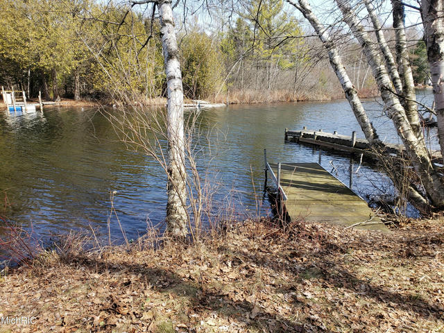 9464 W Shool Section Lake Dr Mecosta, MI 49332