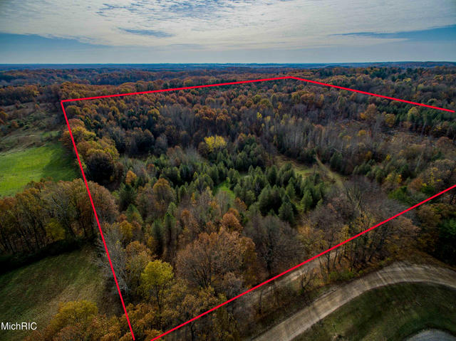 V/L 40 Acres Yale Rd New Era, MI 49446