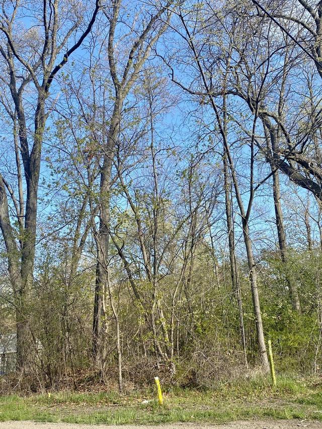 V/L Golden Ave Lot #4  Battle Creek, MI 49015