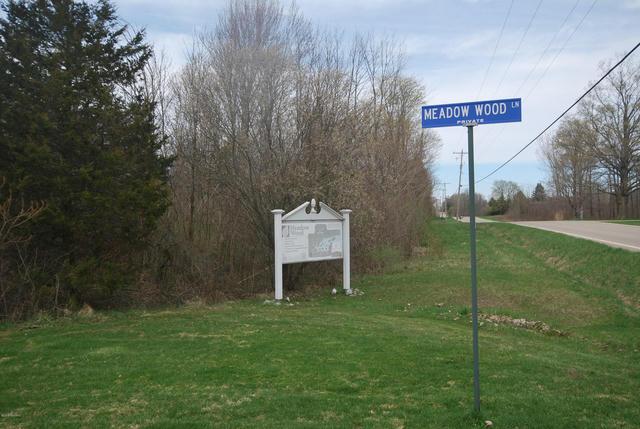 Meadow Wood Ln Fennville, MI 49408