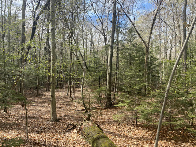 Peppers Trail  Montague, MI 49437