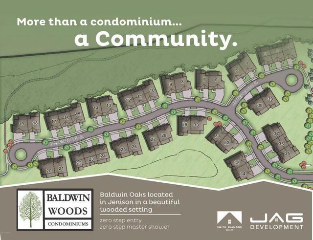 7682 Baldwin Woods 9 Dr Jenison, MI 49428