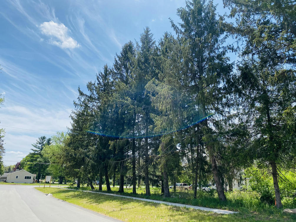 6081 Coventry Woods Dr Belmont, MI 49306