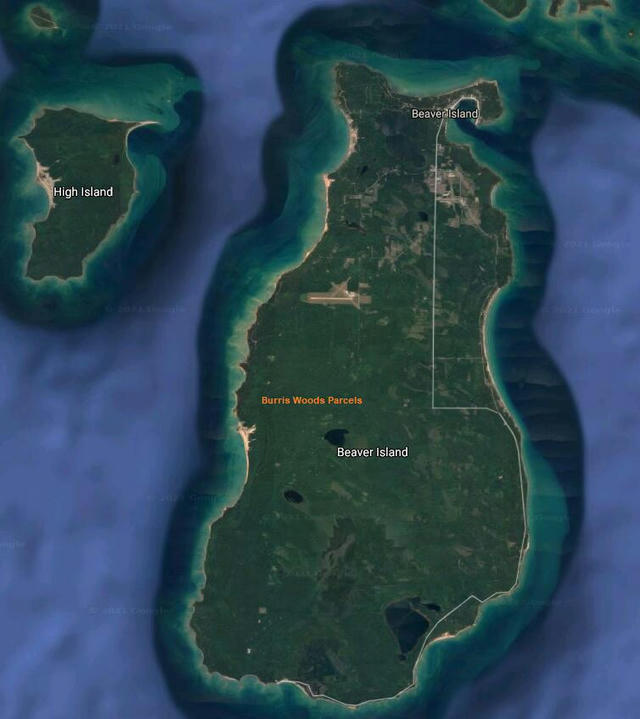Tbd Burris Burris Woods Parcel 4 Ct Beaver Island, MI 49782