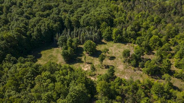 V/L Mackinaw Trail Tustin, MI 49688