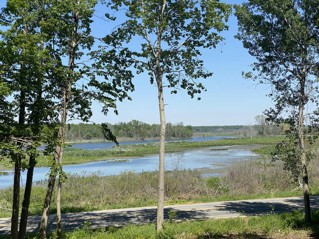 Vl Peach Creek Ln Fennville, MI 49408