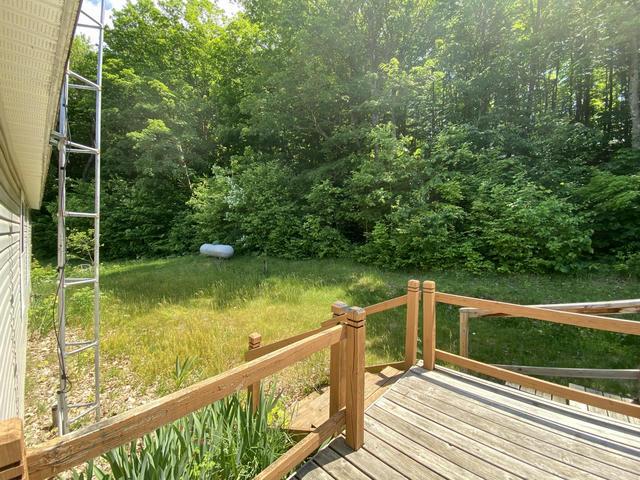 11177 13 Mile Rd Bear Lake, MI 49614