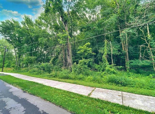 Forest Park Ave Watervliet, MI 49098