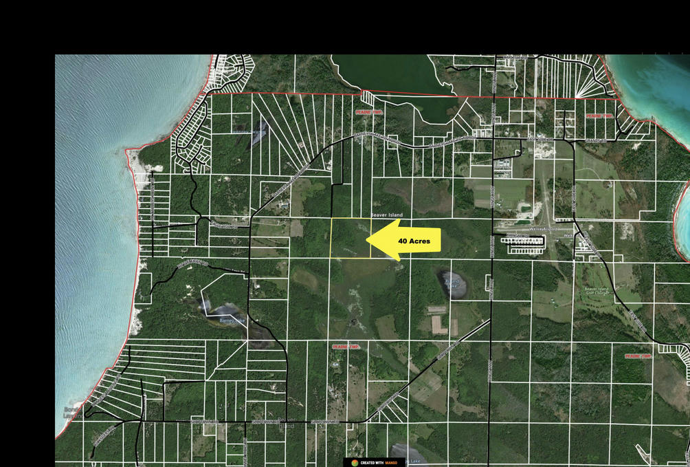 40 Acres Cole's Rd Beaver Island, MI 49782