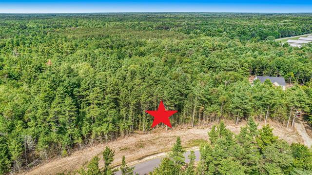 16511 Haven Woods Ct West Olive, MI 49460