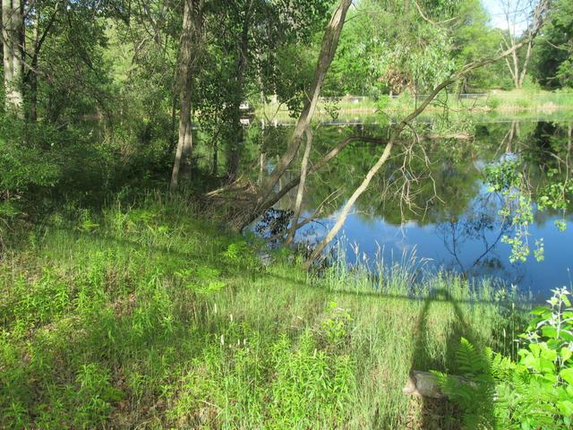 Lot 23 Pond Side Dr Farwell, MI 48622