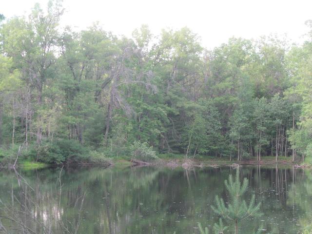 Lot 24 Pond Side Dr Farwell, MI 48622