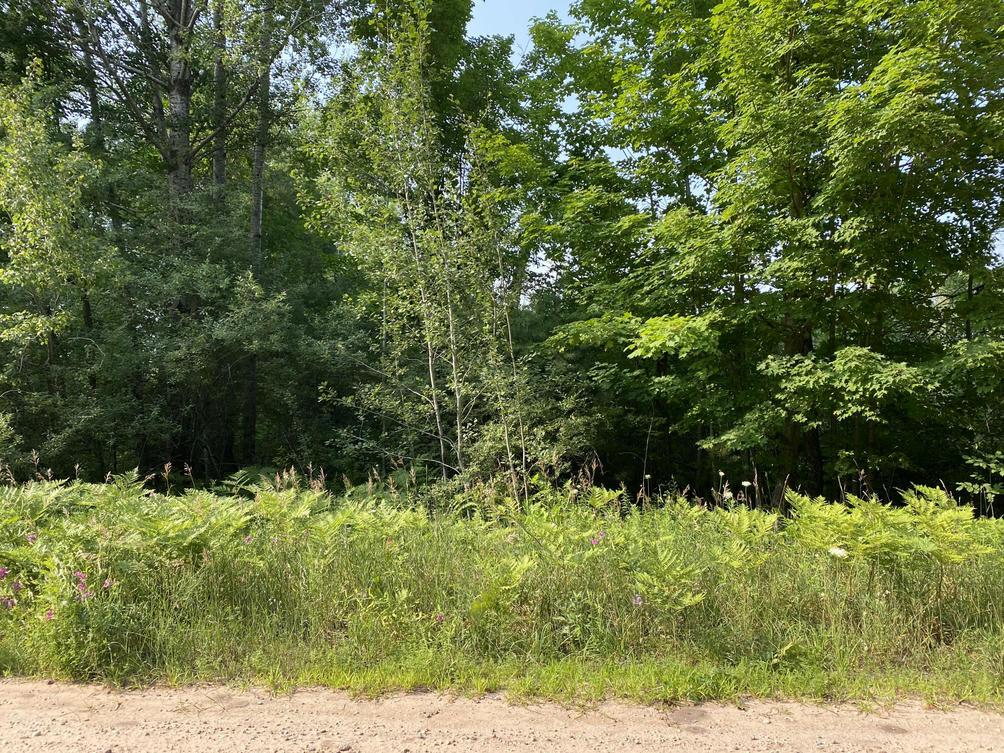 2 Acres, Norconk Rd Bear Lake, MI 49614
