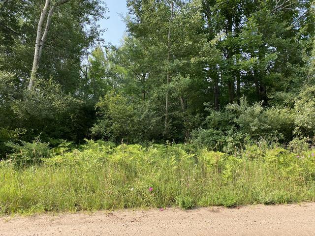 1 Acre, Norconk Rd Bear Lake, MI 49614