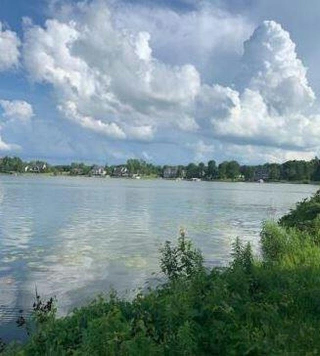 Lot O Dowling Dr Onsted, MI 49265