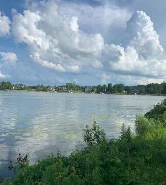 Lot 00 O Dowling Dr Onsted, MI 49265