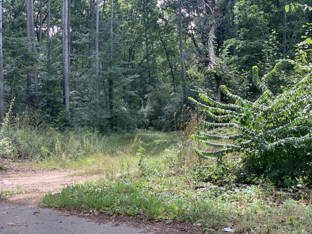 Calender Rd Battle Creek, MI 49014