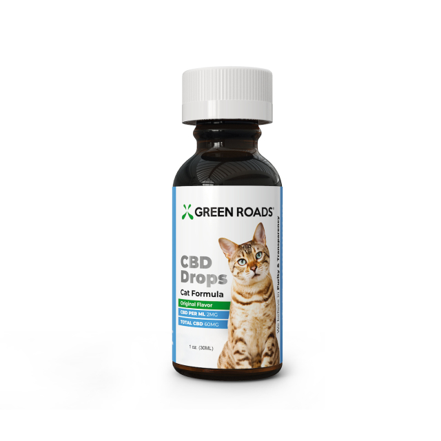 cat-bottle