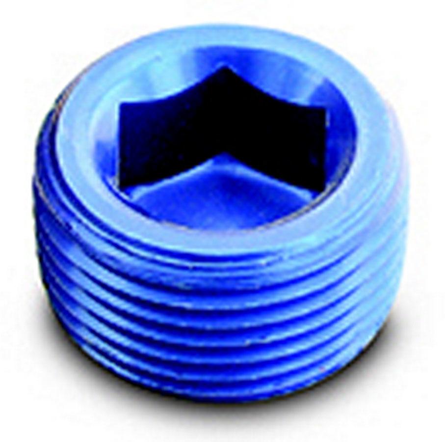 1/4in Pipe Plug