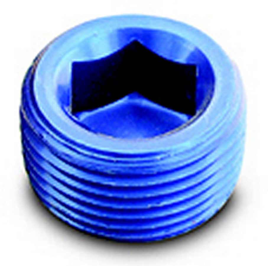 1/2in Pipe Plug