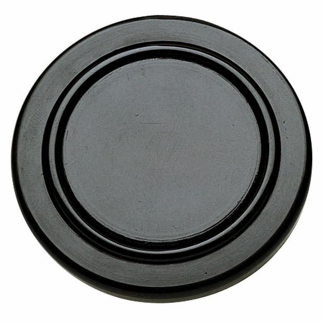 Gt Horn Button