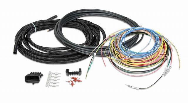 Universal EFI Ignition Harness un-terminated