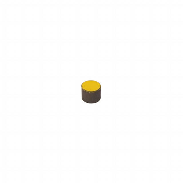 RPM Sensor Magnet Small