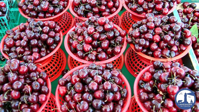 Tasty RV Recipes for Those Michigan Cherries